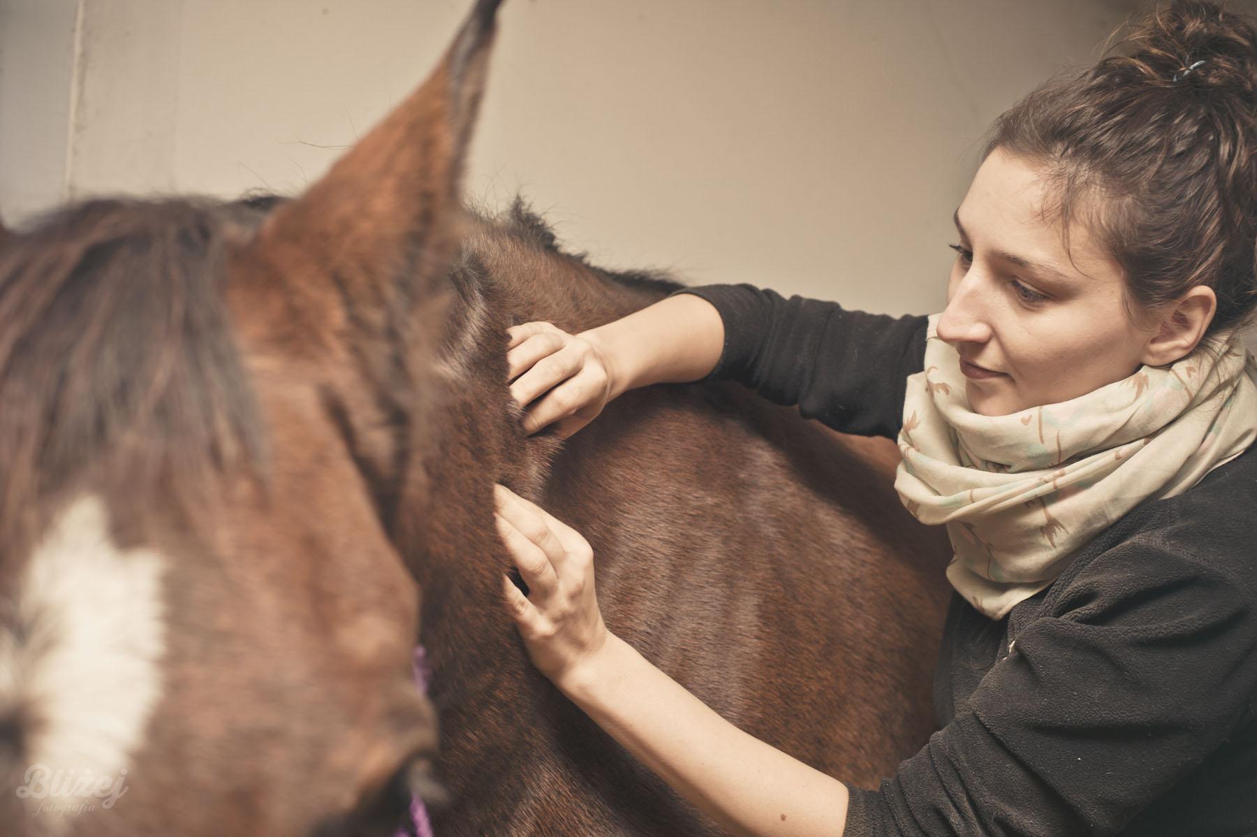Warsztaty Fizjoterapia w użytkowaniu koni- RZUCEWO 21-22.10.2017