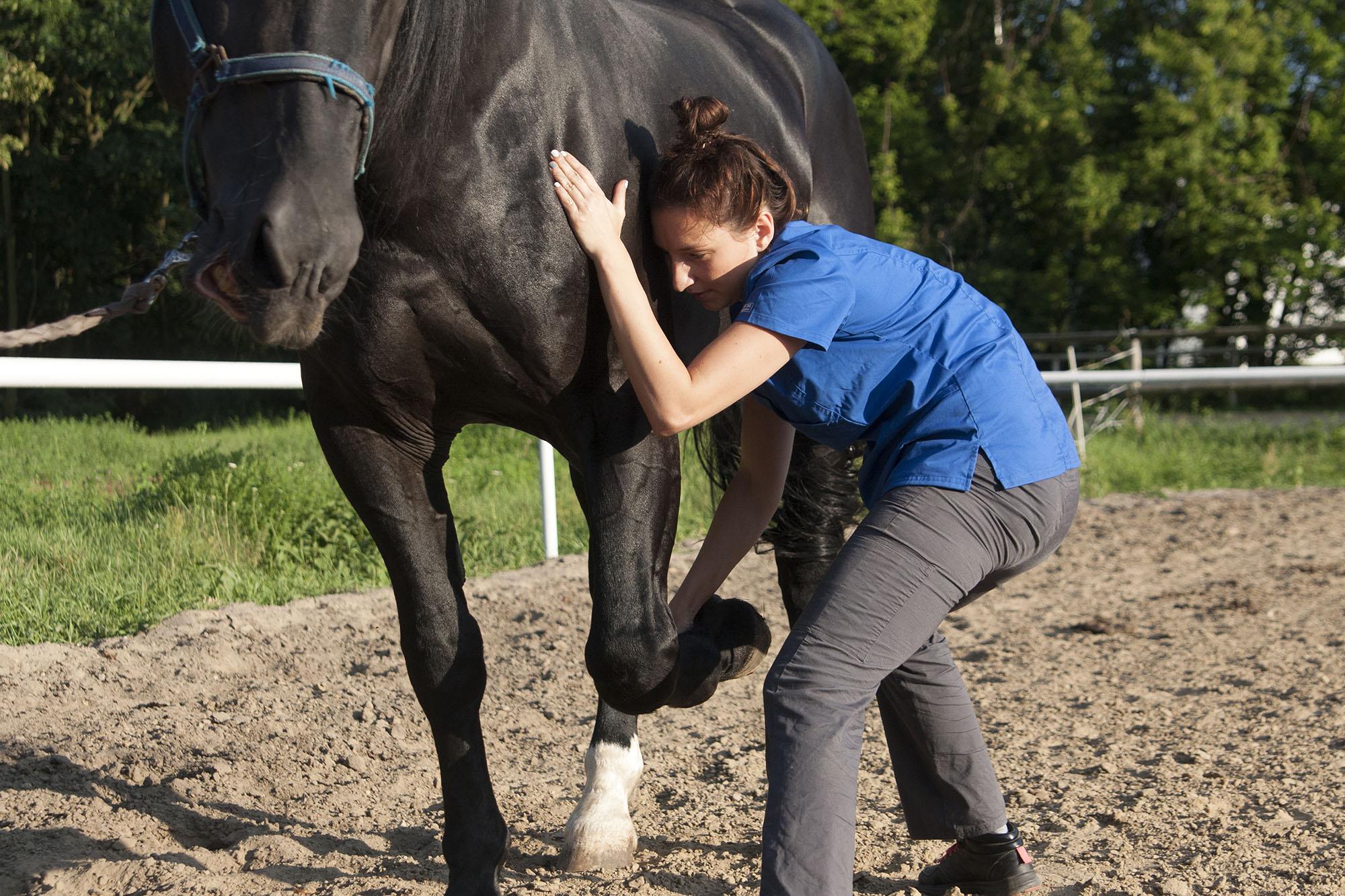 Terapia osteodynamiczna – Metoda Dorna